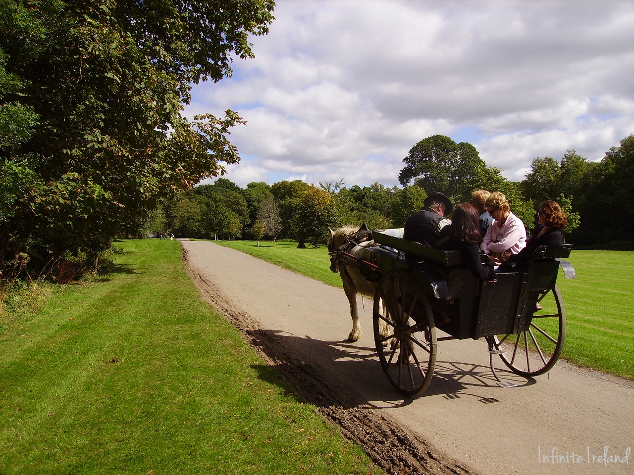 Horse and cart in killarney national park co kerry