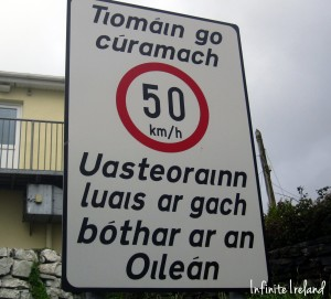 Aran Island Speed Limit Sign