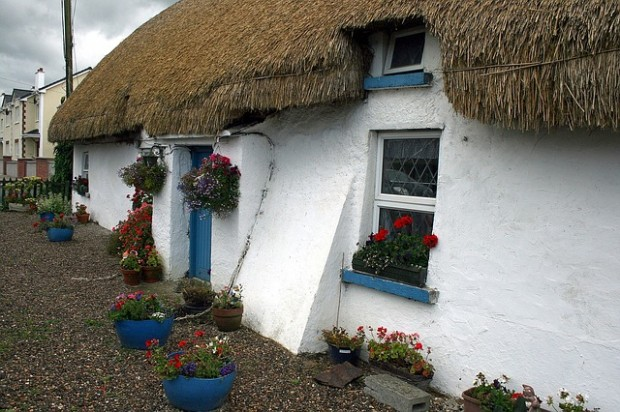Thatched Cottage in Ballyedmond Ireland
