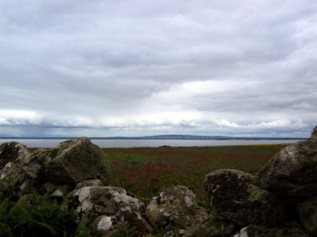 Wexford Coast from Great Saltee Island