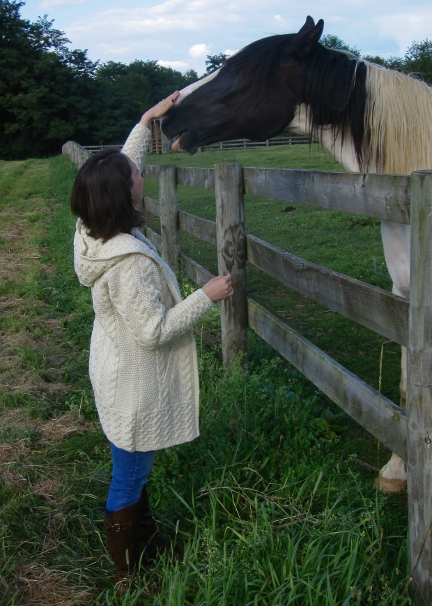 Horse and Sweater 3