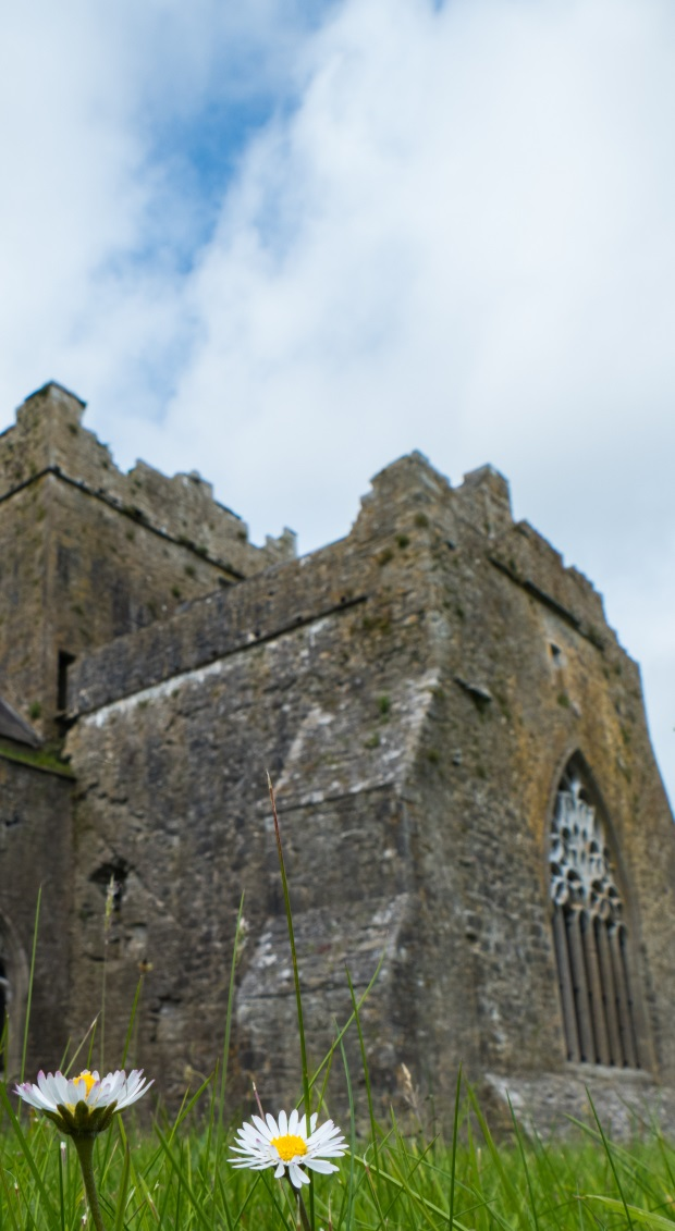 Kilcooley Abbey Three Week Ireland Itinerary