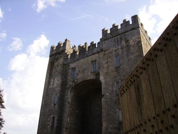 Medieval Castle and door