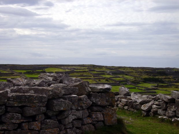 Stone Fences and green fields