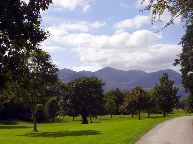 Park with trees and mountains